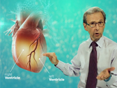 Custom Animated Patient Education: Mitral Valve Prolapse