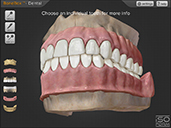 BoneBox™ - Dental